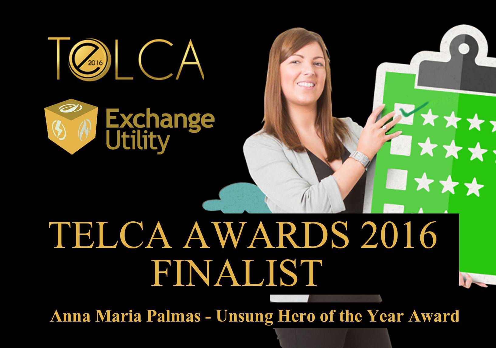 Unsung Hero TELCA Finalist 2016 Anna Maria Palmas